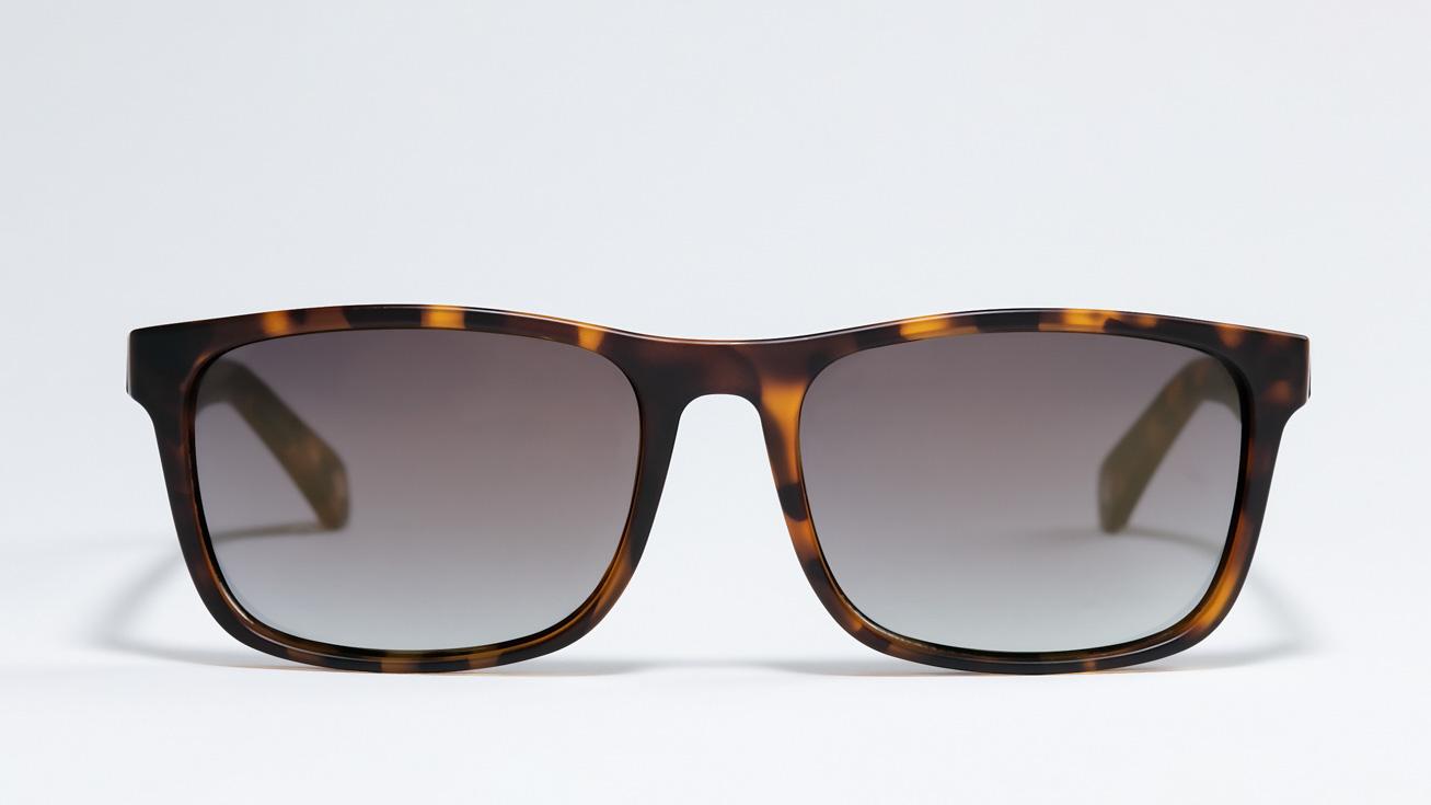 Солнцезащитные очки TED BAKER LOWE 1493 173 1